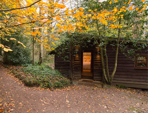 the-pinetum-cabin